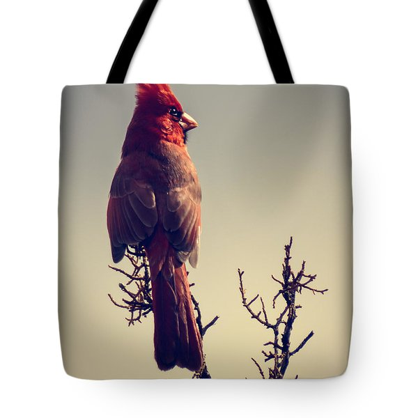 Early Evening Sentinel Tote Bag