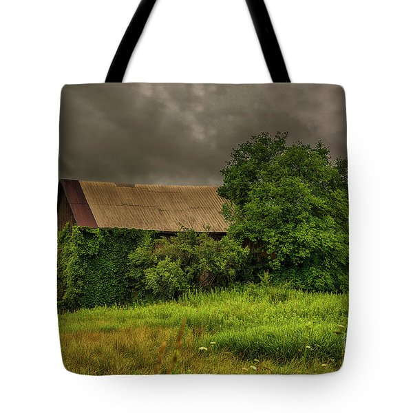 Tote Bag featuring the photograph Early Monring Rain by JRP Photography