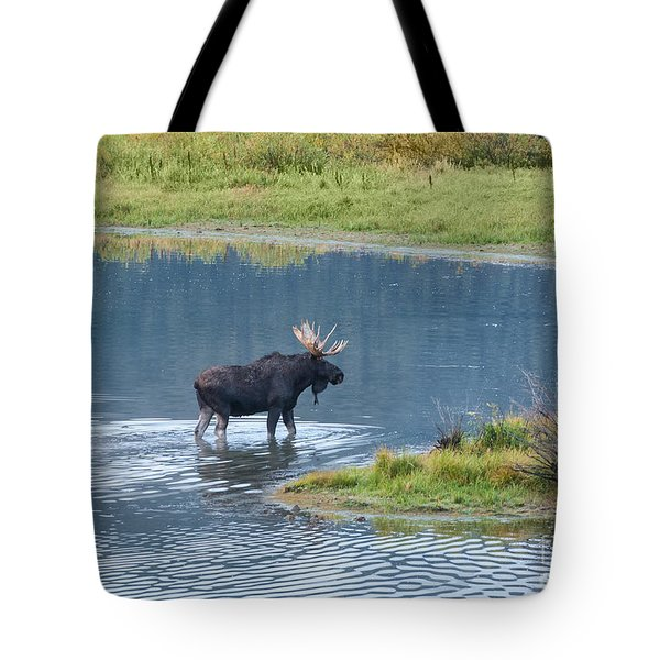 Early Morning Crossing In Grand Teton Tote Bag
