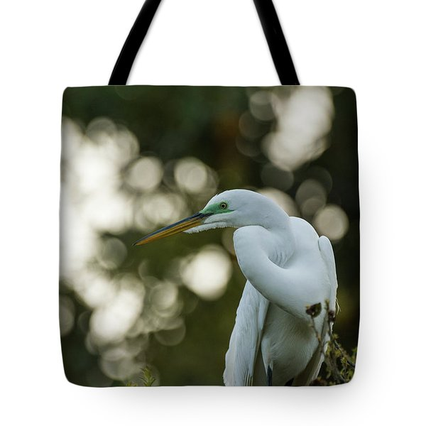 Early Morning Tote Bag by Gregg Southard