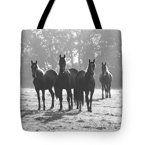 Early Morning Horses Tote Bag by Hazy Apple