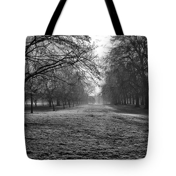 Early Morning In Hyde Park 16x20 Tote Bag