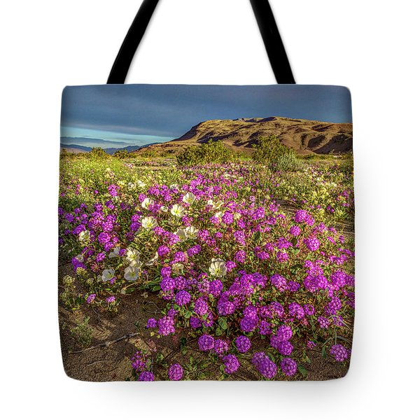 Tote Bag featuring the photograph Early Morning Light Super Bloom by Peter Tellone