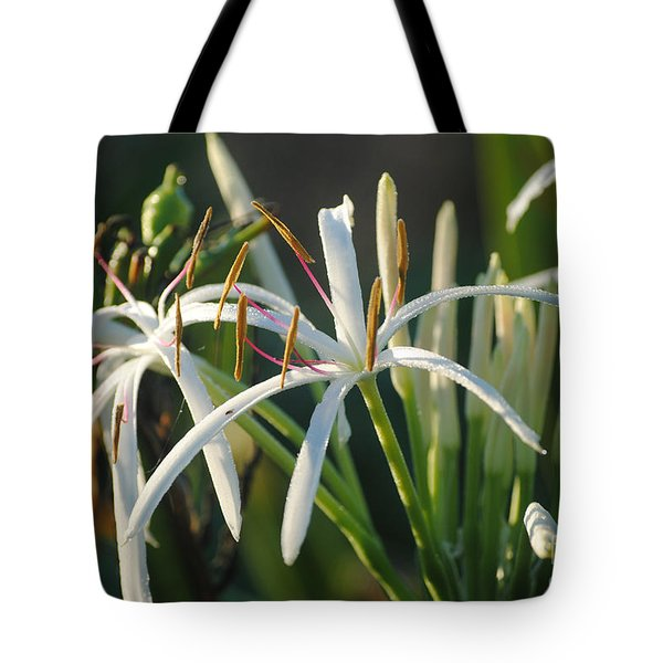 Early Morning Lily Tote Bag