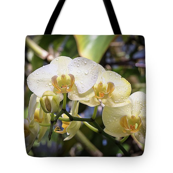 Early Morning Orchids Tote Bag