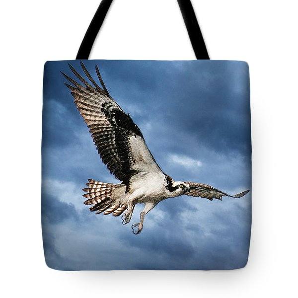 Tote Bag featuring the photograph Early Morning Osprey by Brian Tarr