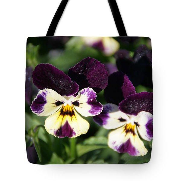 Early Morning Pansies Tote Bag