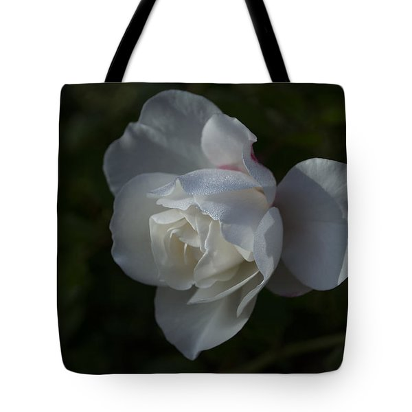 Early Morning Rose Tote Bag