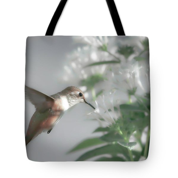 Early Morning Rufous Tote Bag