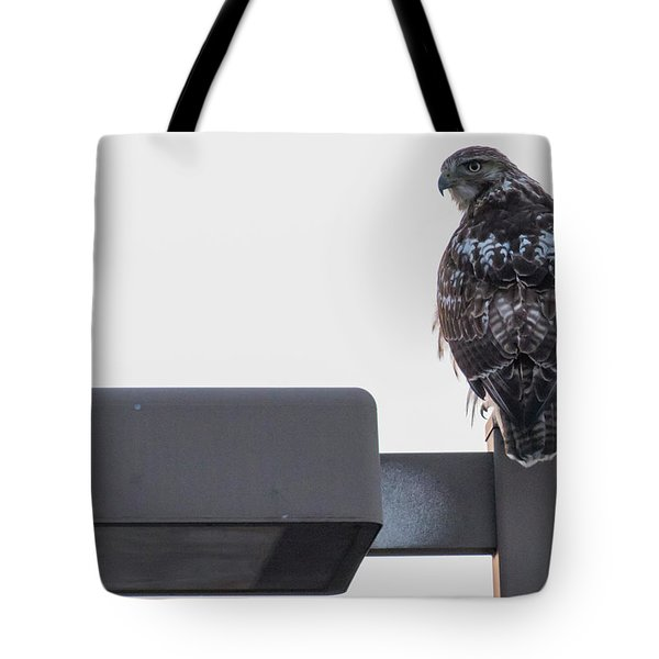 Tote Bag featuring the photograph Early Morning Sentinel   by Ricky L Jones