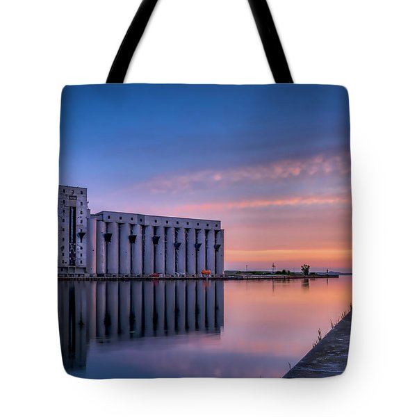 Early Morning Sentinels II Tote Bag by Irwin Seidman