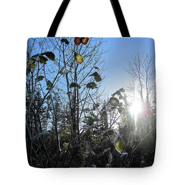 Early Morning Sun Tote Bag