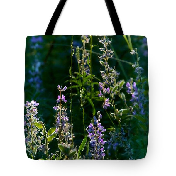 Early Morning2 Tote Bag by Loni Collins