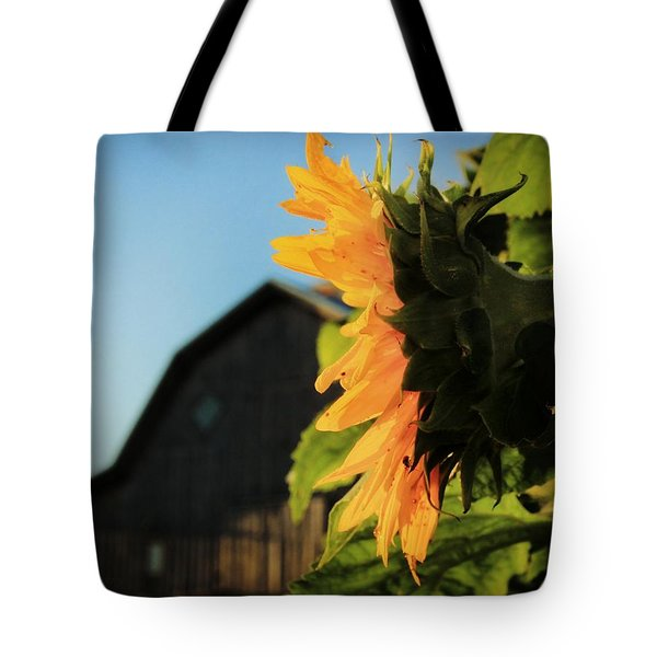 Tote Bag featuring the photograph Early One Morning by Chris Berry