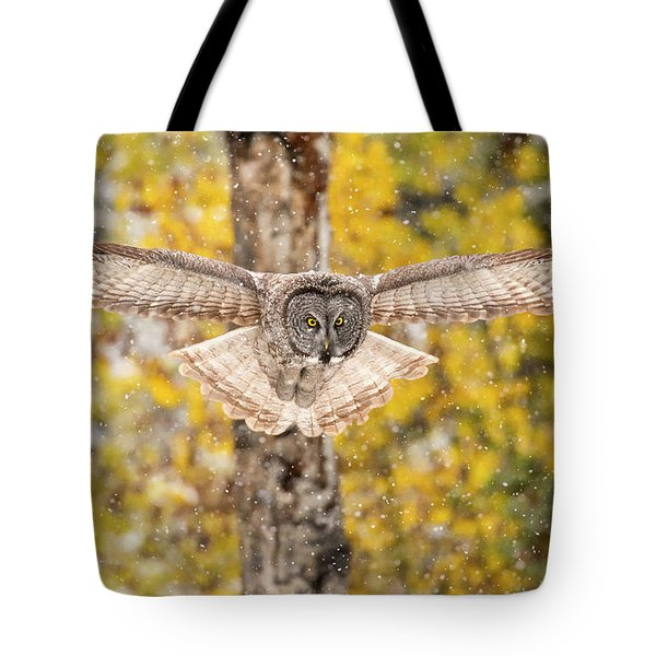 Silent Approach   Tote Bag