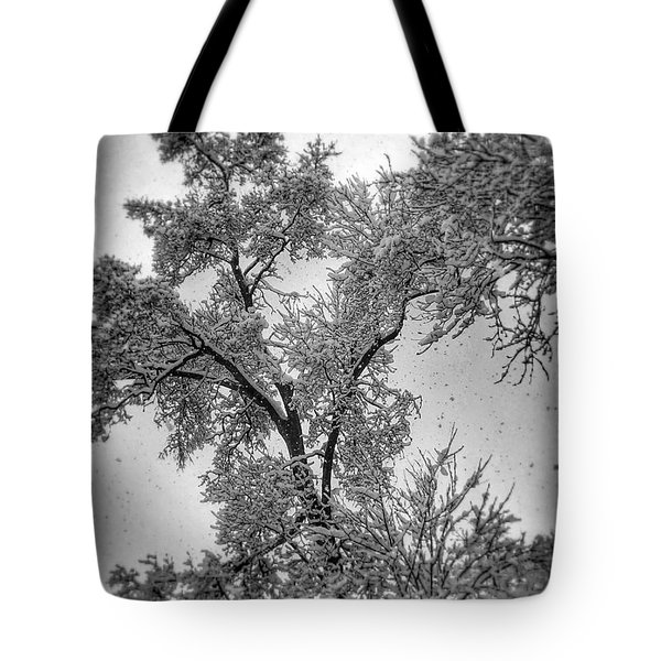 Early Snow Tote Bag by Steven Huszar