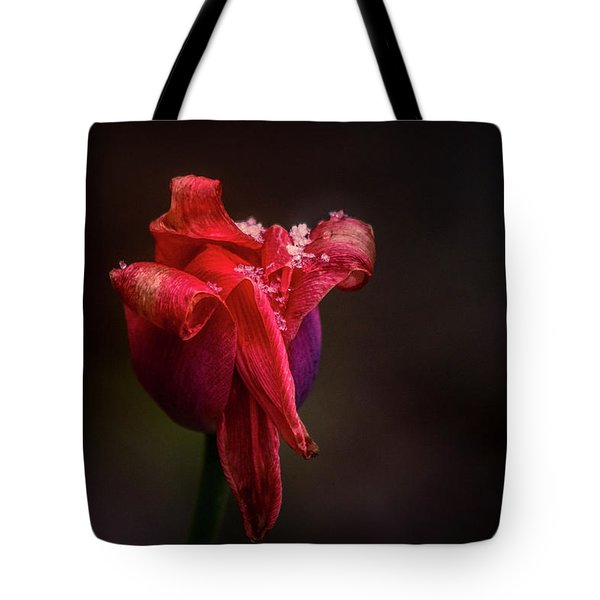 Early Spring Tote Bag