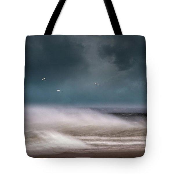 Early Spring At Nauset Beach Tote Bag