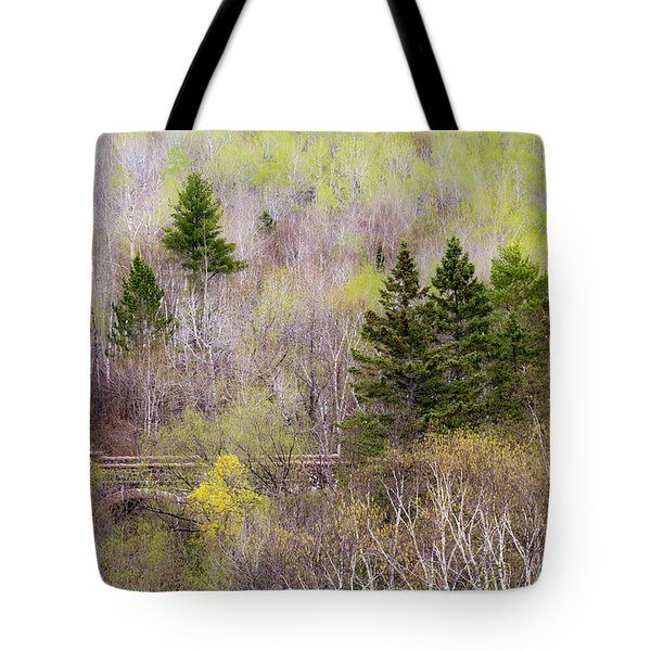 Tote Bag featuring the photograph Early Spring Palette by Mary Amerman