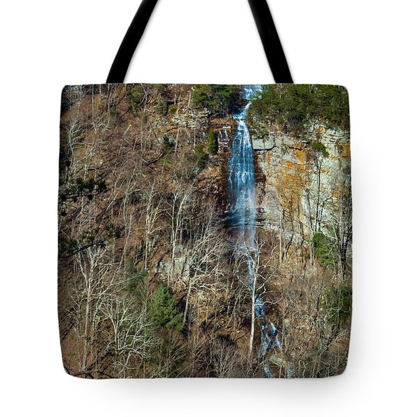 Early  Spring Waterfall  Tote Bag