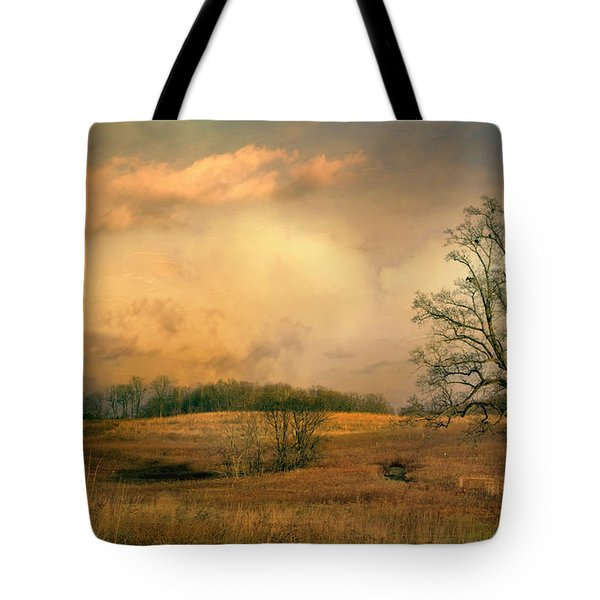 Early Spring Storm Tote Bag