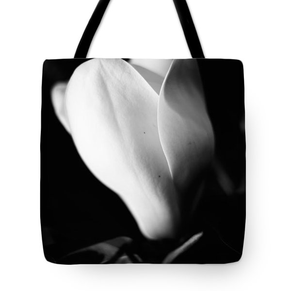 Early Stages Tote Bag