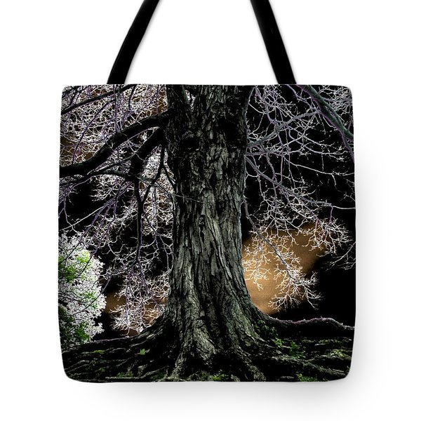 Earth Bound Tote Bag by Misha Bean