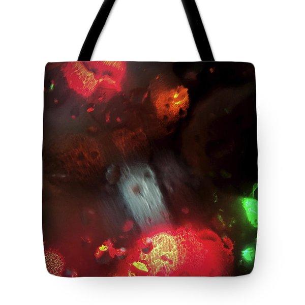 Earth Intruders Tote Bag