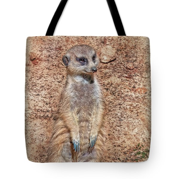 Tote Bag featuring the photograph Earth Manikin by Hanny Heim