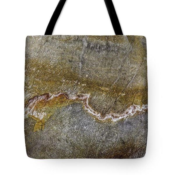 Earth Portrait 000-204 Tote Bag