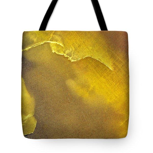 Earth Portrait 001-120 Tote Bag
