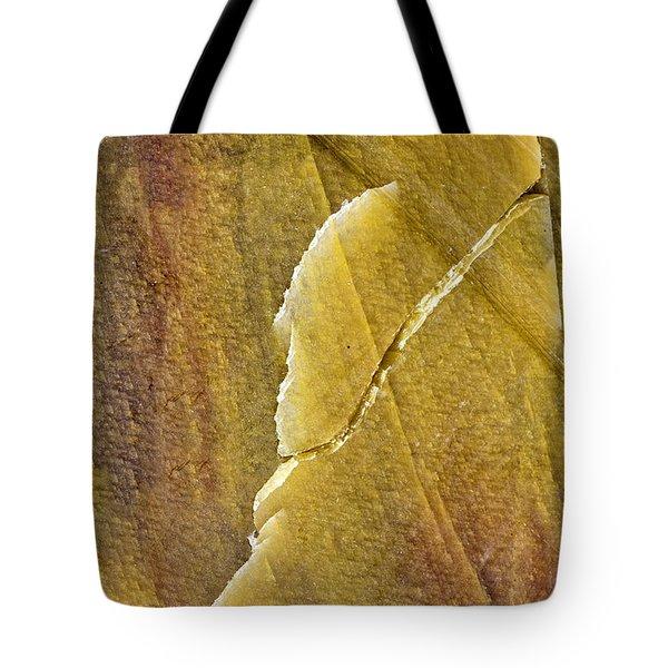 Earth Portrait 001-66 Tote Bag