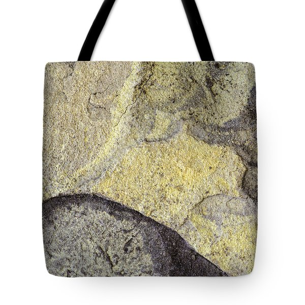 Earth Portrait 010 Tote Bag