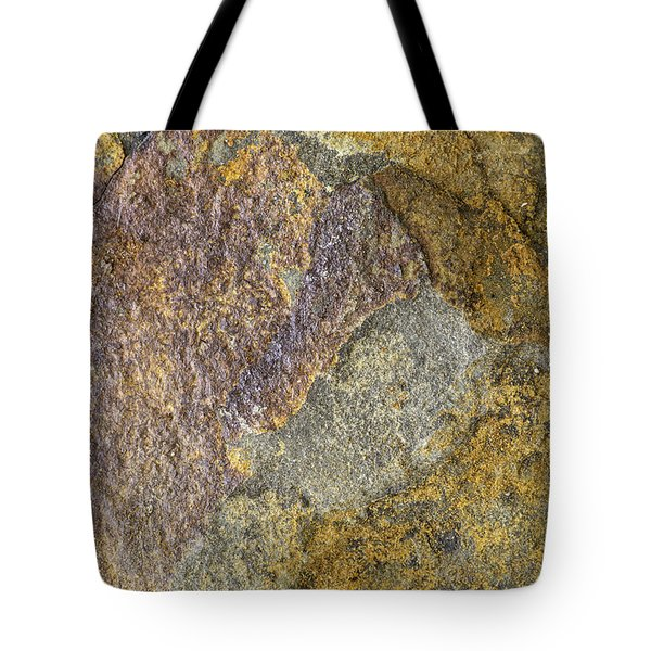 Earth Portrait 011 Tote Bag