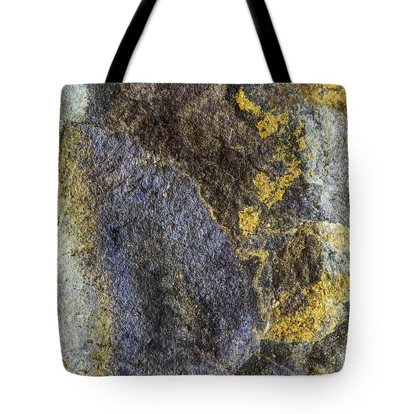 Earth Portrait 012 Tote Bag