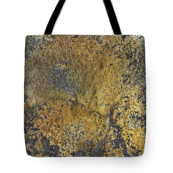 Earth Portrait 014 Tote Bag