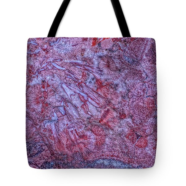 Earth Portrait 257 Tote Bag
