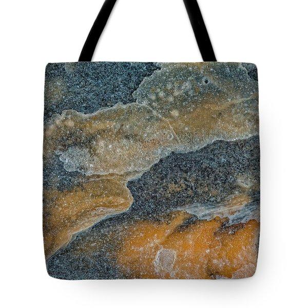 Earth Portrait 283 Tote Bag
