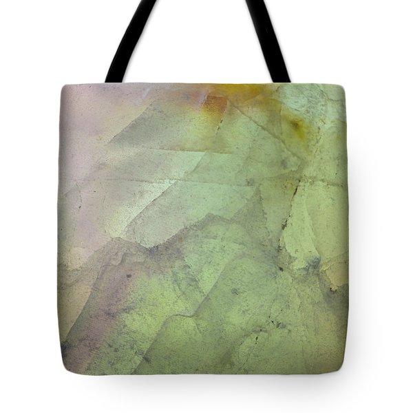 Earth Portrait 284 Tote Bag
