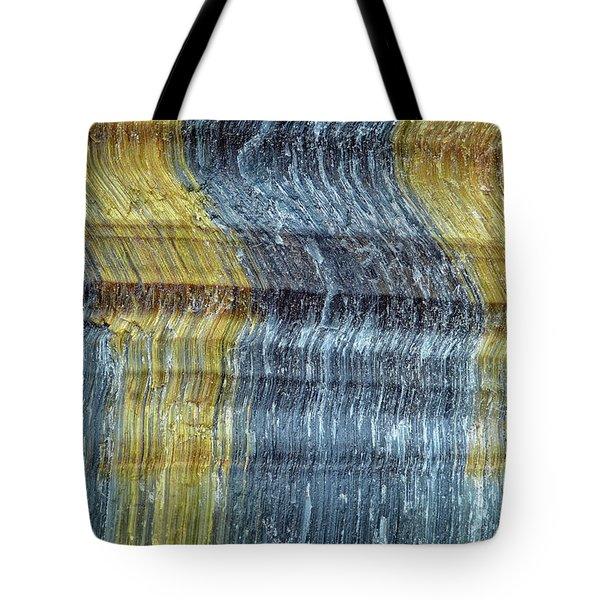 Earth Portrait 295 Tote Bag