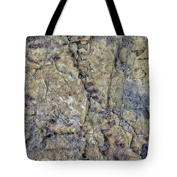 Earth Portrait L1 Tote Bag
