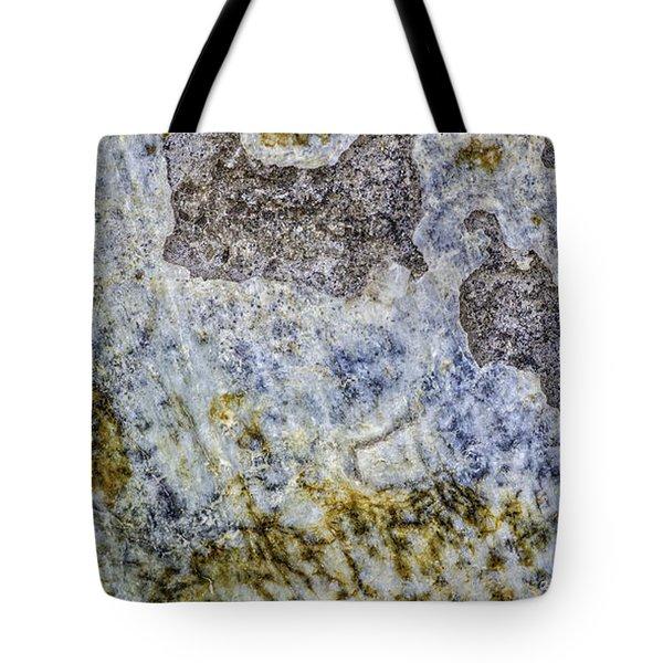 Earth Portrait L4 Tote Bag