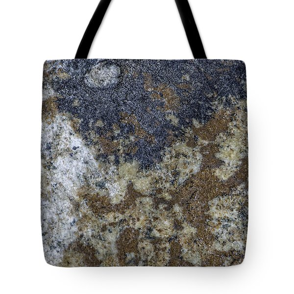 Earth Portrait L8 Tote Bag