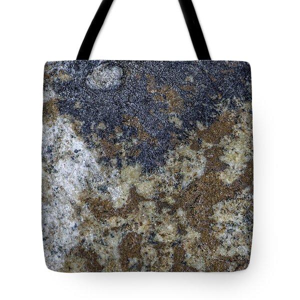 Earth Portrait L8 Tote Bag