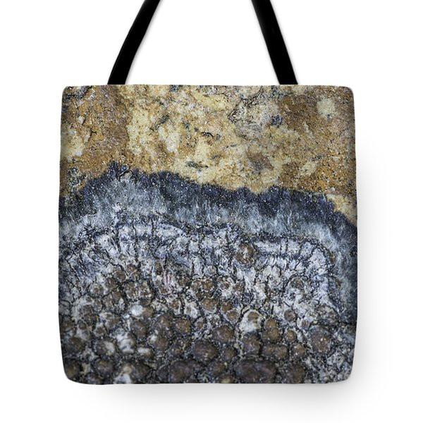 Earth Portrait L9 Tote Bag