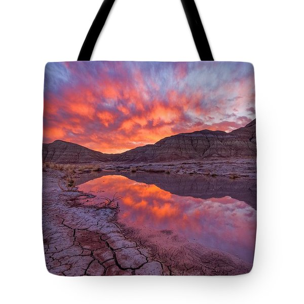 Earth Scales Tote Bag