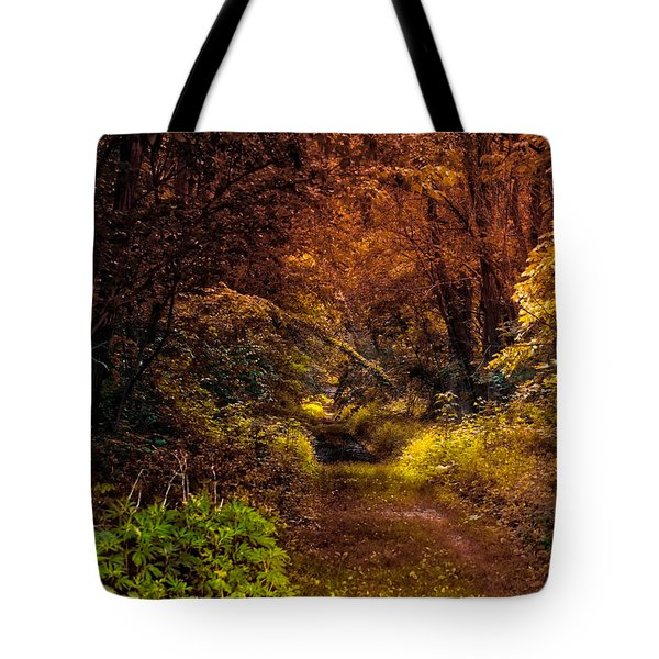 Earth Tones In A Illinois Woods Tote Bag by Thomas Woolworth