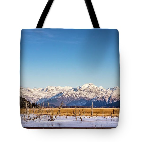 Earthquake Remains Tote Bag