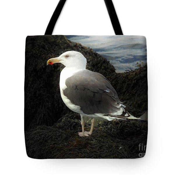 East Coast Herring Seagull Tote Bag