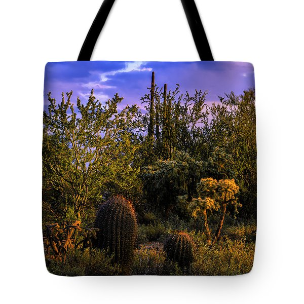 Tote Bag featuring the photograph East Of Sunset V40 by Mark Myhaver